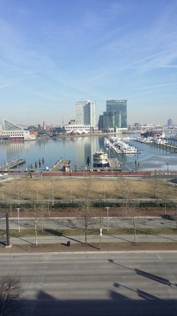 Royal Sonesta Harbor Court Baltimore: Room 620 Harbor View King