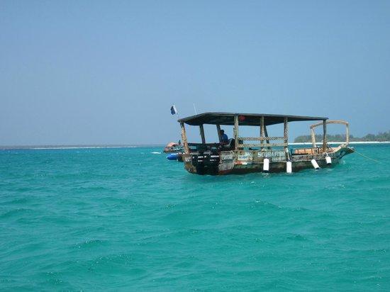 Dive Point Zanzibar: dive point 1