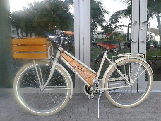 Gelato & Co. Cremeria Italiana: delivery bicycle