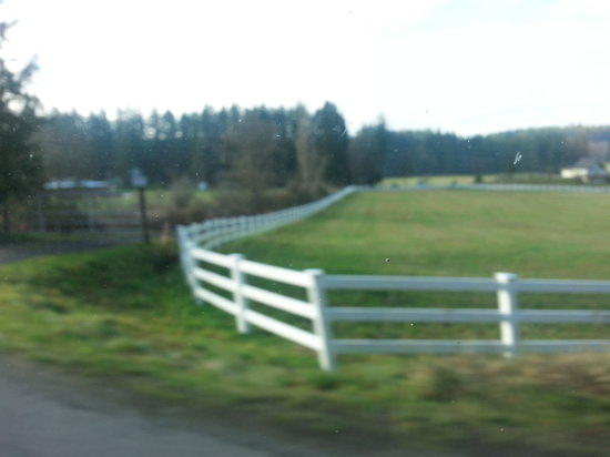 Huber's Inn Port Townsend: Beaver Valley just outside Port Townsend