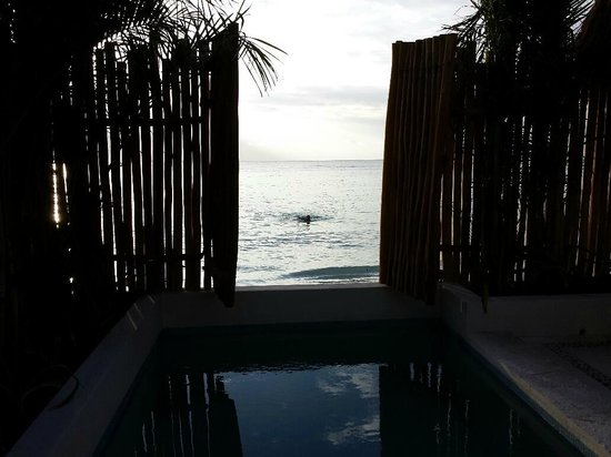 Mahekal Beach Resort: View from my room/private pool