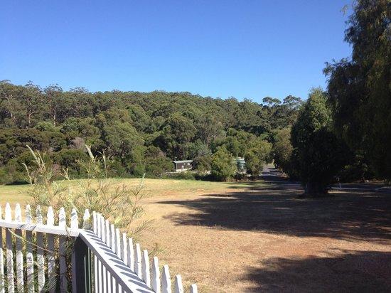 Pemberton Caravan Park : Camp overview from office