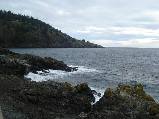 Tucker House Inn : Awesome view from the San Juan Island