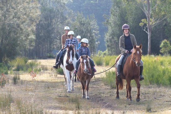 The Oaks Ranch and Country Club: Trail Ride