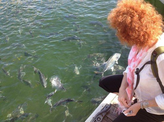15th Street Fisheries: Despite the food, feeding the fish is fun.