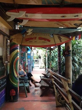 The Arts Factory Backpackers Lodge : Arts Factory Jan 2014