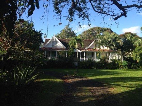 Balenbouche Estate : East view
