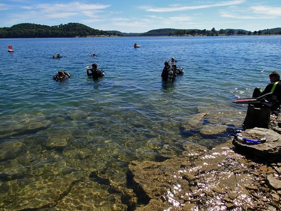 Fish Are A Plenty Picture Of Beaver Lake Eureka Springs