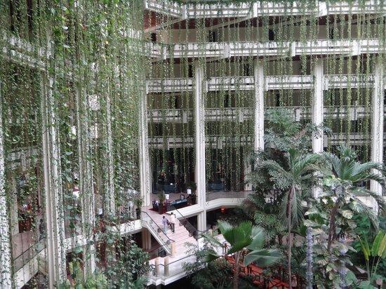 Paradisus Cancun : Selva en el Hall de Entrada