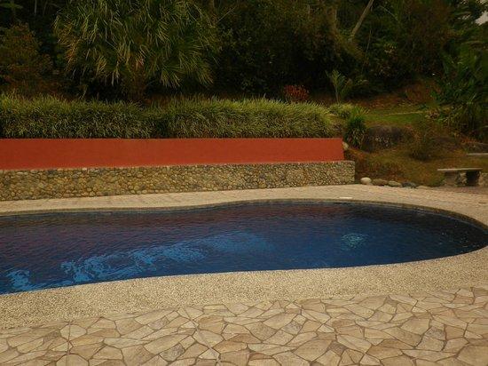 Hotel de Montaña El Pelicano: pool area
