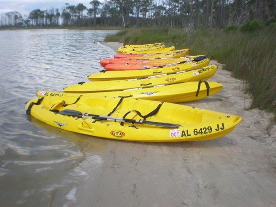 GoGo Kayaks