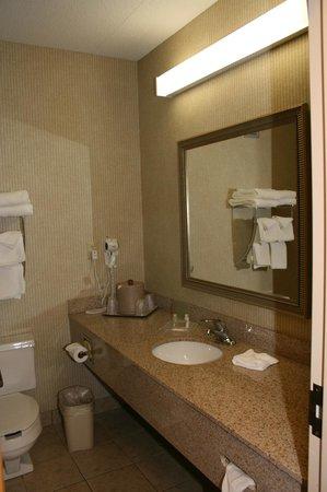 Radisson St. Joseph : Bathroom
