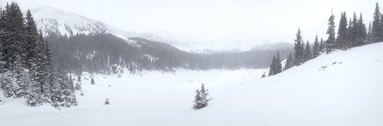 Winter at Williams Lake.