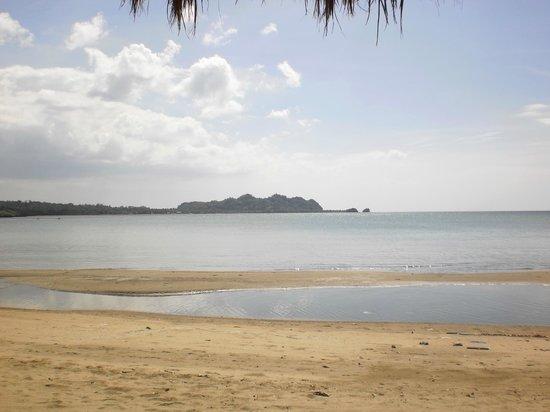 Nabulao Beach and Dive Resort : Beach view
