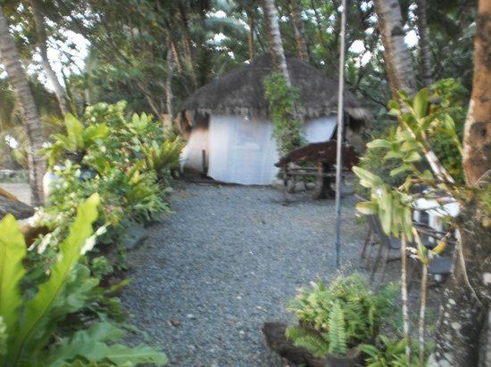 Nabulao Beach and Dive Resort : Garden Wonderland