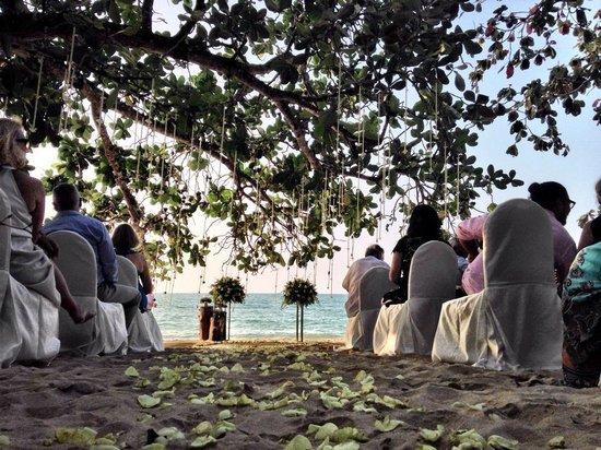 The Sarojin: Wedding set up