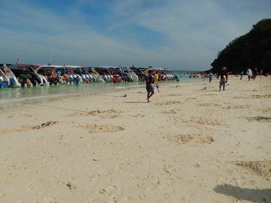JC Tours : PhiPhi Island