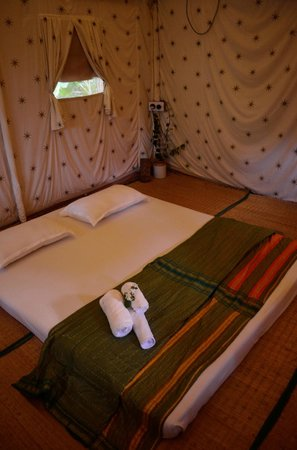 Atithi Parinay Homestay: The tent where we stayed