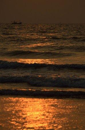 Atithi Parinay Homestay: Aare waare Beach