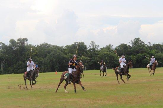 El Rey Polo Country Club