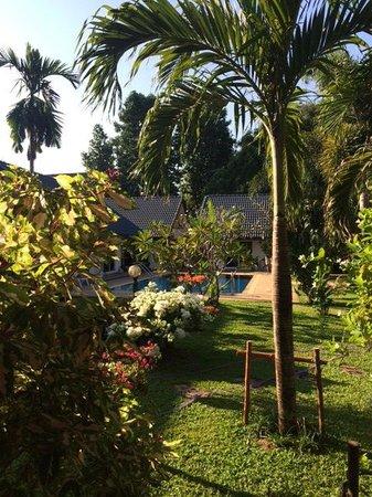 Phuket Airport Hotel : Garden/pool