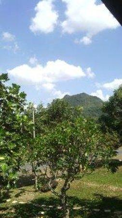 Tasoh Lake Resort & Retreat: Great views