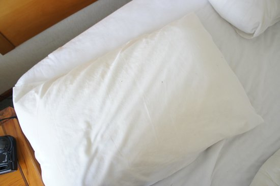 SilverOaks Hotel Geyserland : blood spots on pillow after waking up in morning