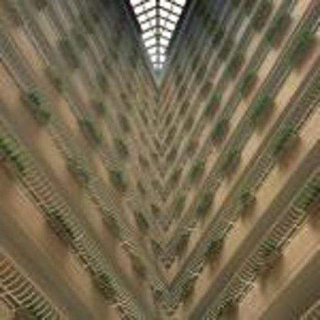 Pan Pacific Singapore : Atrium