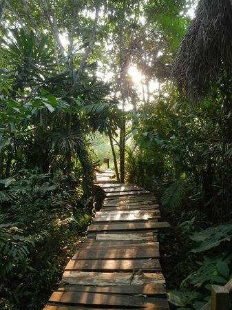 Freedomland Phu Quoc Resort: the walk to our bungalow