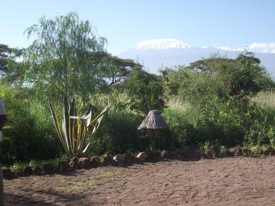 Kibo Safari Camp: kibo2