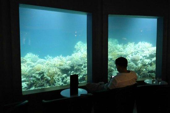Niyama Private Islands Maldives: Subsix Bar