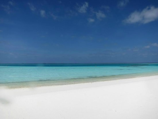 Niyama Private Islands Maldives: The side where all the beach villas with pool are located