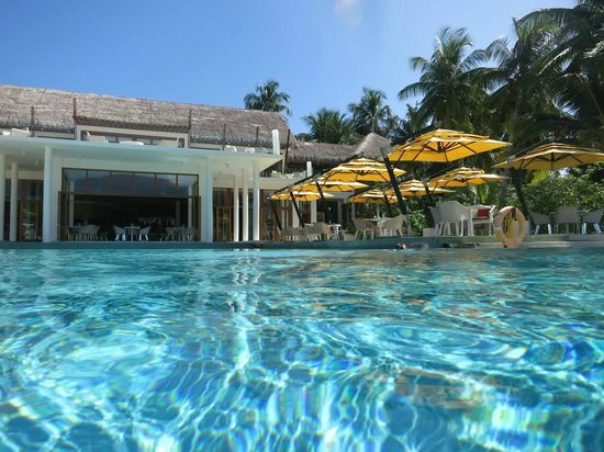 Niyama Private Islands Maldives: Infinity pool
