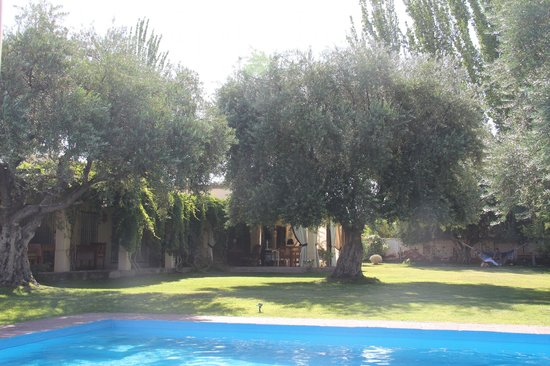 Conalbi Grinberg Casa Vinicola: Relaxing by the pool