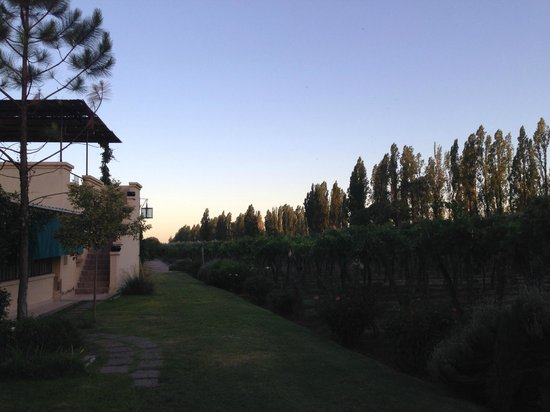 Conalbi Grinberg Casa Vinicola: Sunset on our last night