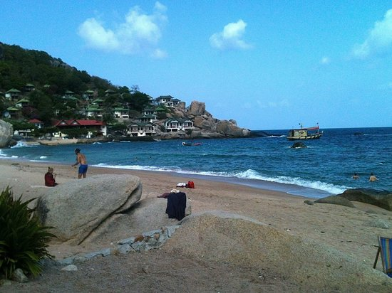 Calypso Diving - Koh Tao: Die Bucht
