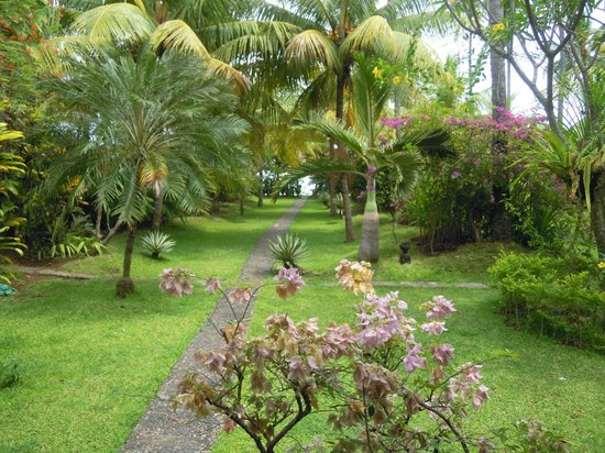 Bali Sandat Guest House: The beautiful garden view