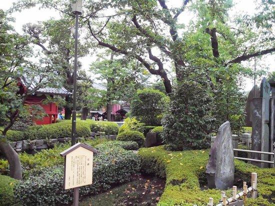 Asakusa Shrine: территория