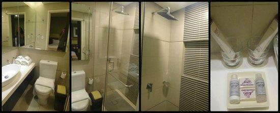 Ciudad Fernandina Hotel : restroom