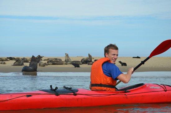 Eco Marine Kayak Tours: kayak
