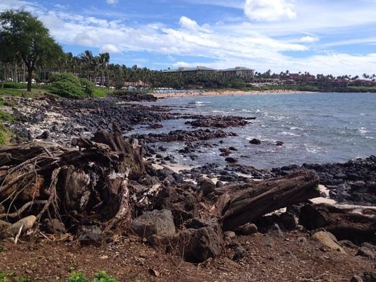 Southerly View of Wailea Beach