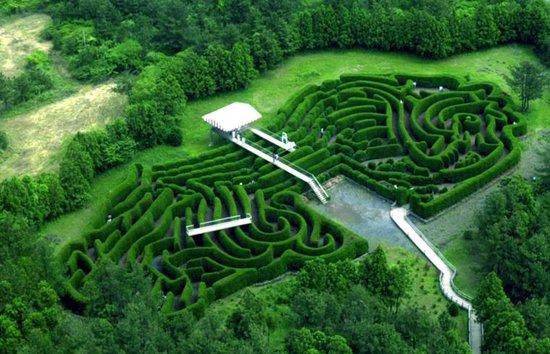 Photo of Botanical Garden Jeju Kimnyoung Maze Park at 구좌읍 만장굴길 122, Jeju 63348, South Korea