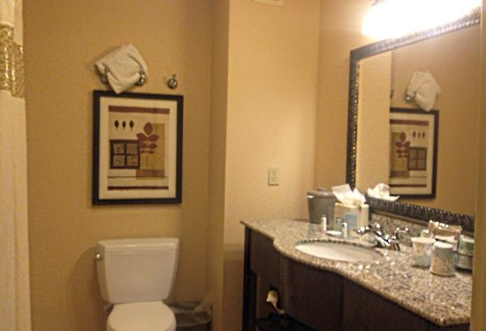 Hampton Inn & Suites Tahoe-Truckee : bath