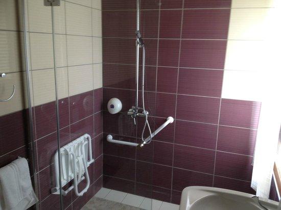 Hotel Restaurant Le Clos des Tanneurs: salle de bain