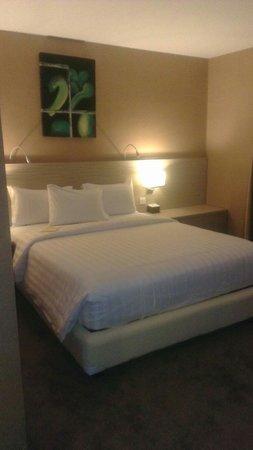 Biz Hotel: Deluxe Room