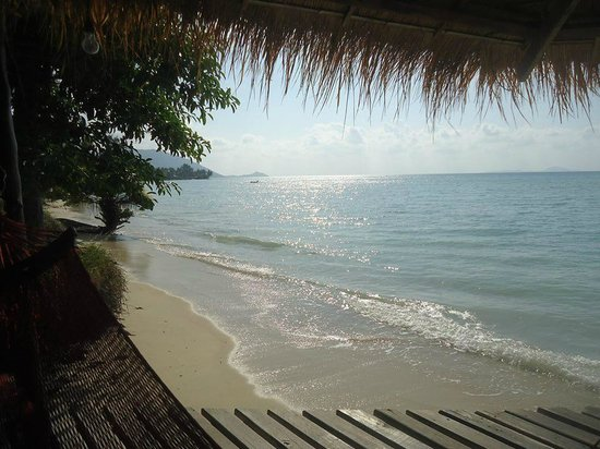 The Blue Parrot Beach Resort: The blue Parrot Resort