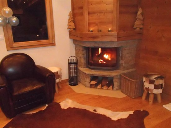 Mountain Spaces - Blue Bird Lodge : Returning from the slopes to a log fire!