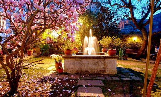Costa Vella Hotel: Fuente y magnolio noche