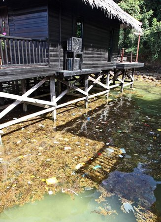 Gayana Eco Resort: Trash/Rubbish