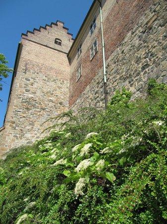 Castillo y Fortaleza de Akershus: замоок